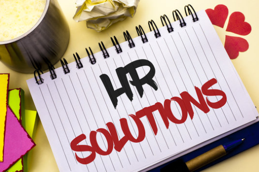 Plum Jobs HR Solutions for HR expertise for organizations